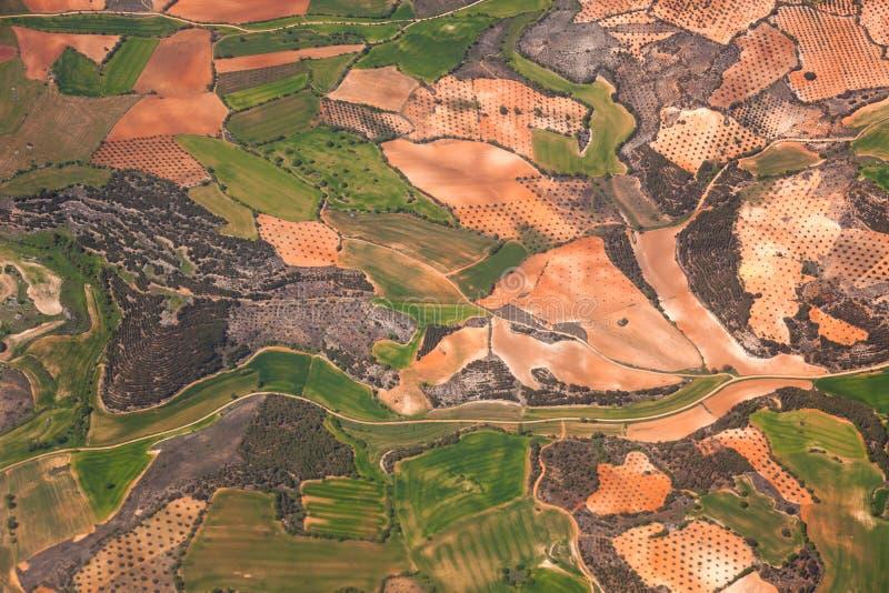 Flyg- sikt av fält för landsbygd/gräsplan och olivgröna kolonier/, arkivfoto