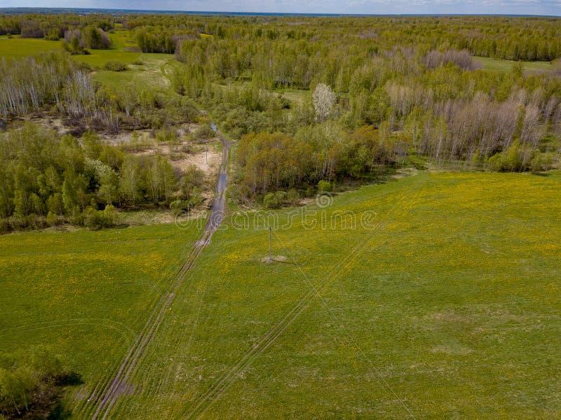 Flyg- sikt av fältet med grönt gräs och gula maskrosor utan folk och avskräde med skogen och träd H?lsa och royaltyfri foto