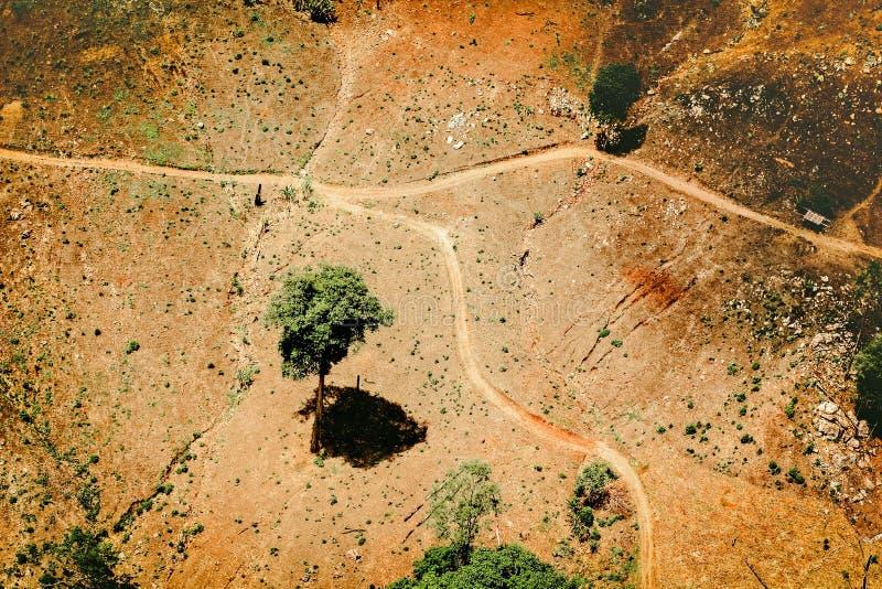 Flyg- sikt av fertil jordbruksmark fotografering för bildbyråer