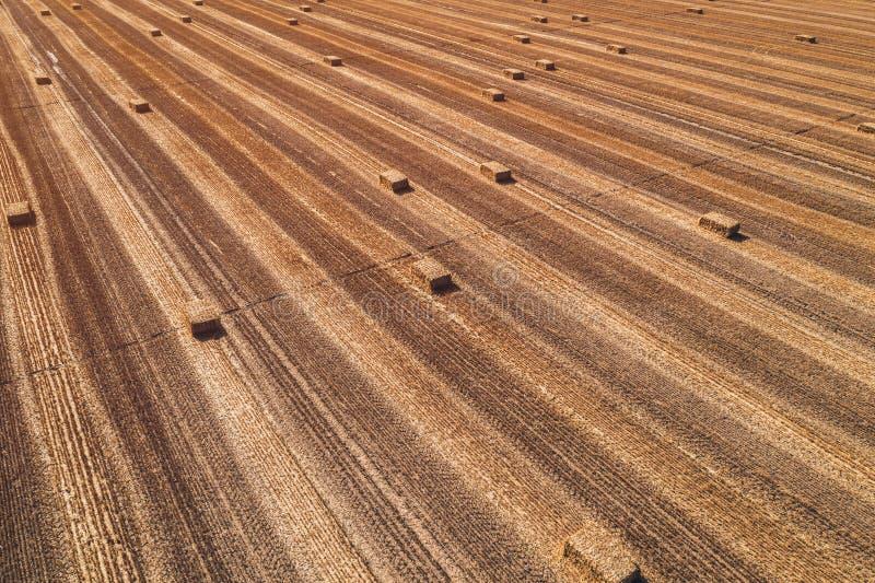Flyg- sikt av fyrkantiga höbaler i fält efter skörd arkivfoton