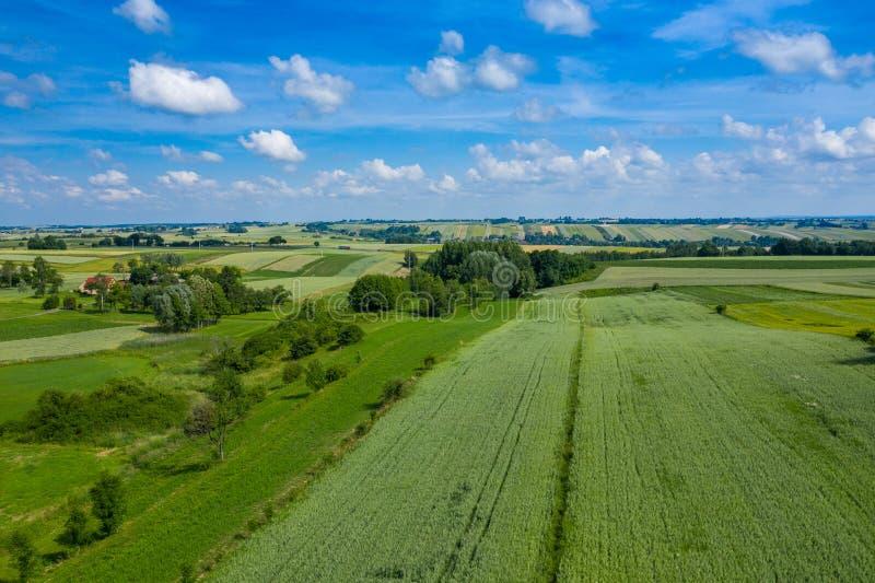 Flyg- sikt av jordbruksmarker och berg i lantliga Polen som ses från surret unga vuxen m?nniska fotografering för bildbyråer