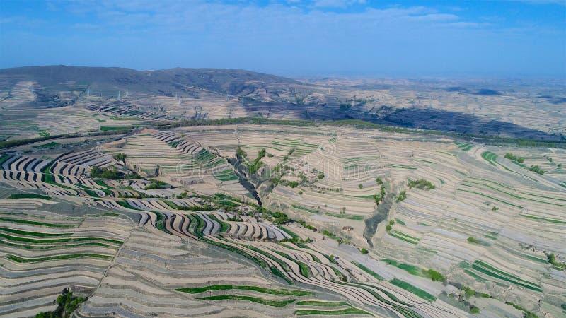 Flyg- sikt av kullar för lantgårdfält, terrasserad dal med massiv agricutlure arkivbild