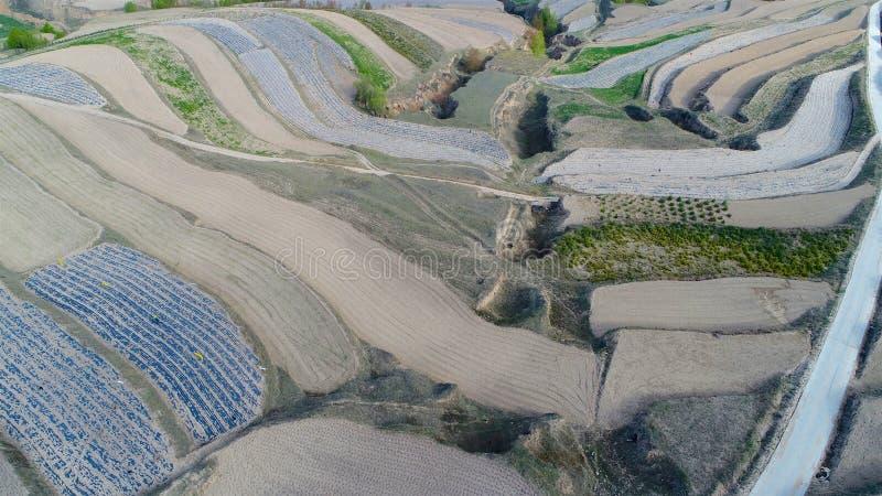 Flyg- sikt av kullar för lantgårdfält, terrasserad dal med massiv agricutlure arkivfoton
