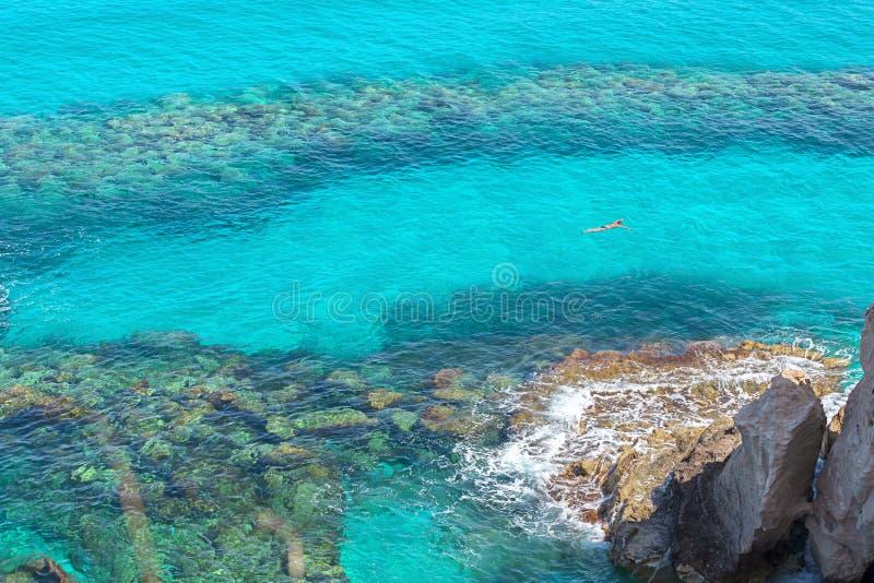 Flyg- sikt av mannen som snorklar i klart tropiskt havsvatten, manlig simning i härlig fjärd med korallbakgrund på solig dag royaltyfri fotografi