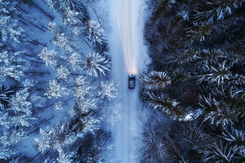 Flyg- sikt av nattskogen som täckas, genom att förbigå för snö, för väg och för bil fotografering för bildbyråer