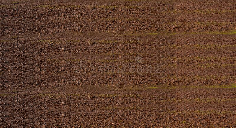 Flyg- sikt av rader av jord av fältet, innan att plantera Fåror ror modellen i ett plogat fält som är förberett för att plantera  arkivfoton