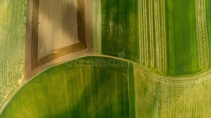 Flyg- sikt av skördfält i sommartiden i Moravia, Tjeckien royaltyfria bilder