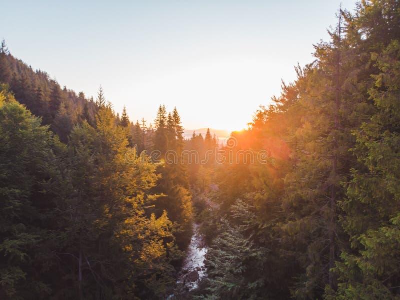 flyg- sikt av solnedg?ngen ?ver berg med skogen och floden arkivfoto