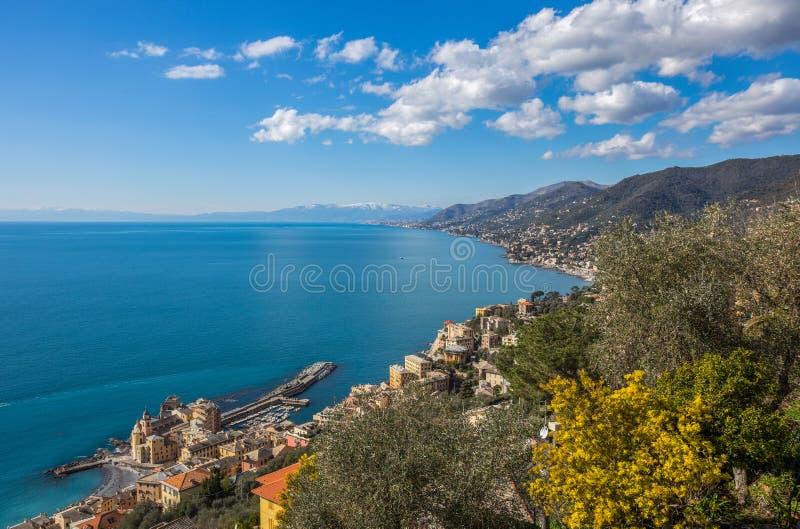 Flyg- sikt av staden av Camogli och östliga riviera, Genoa Genova landskap, Ligurian riviera, medelhavs- kust, Italien arkivbilder