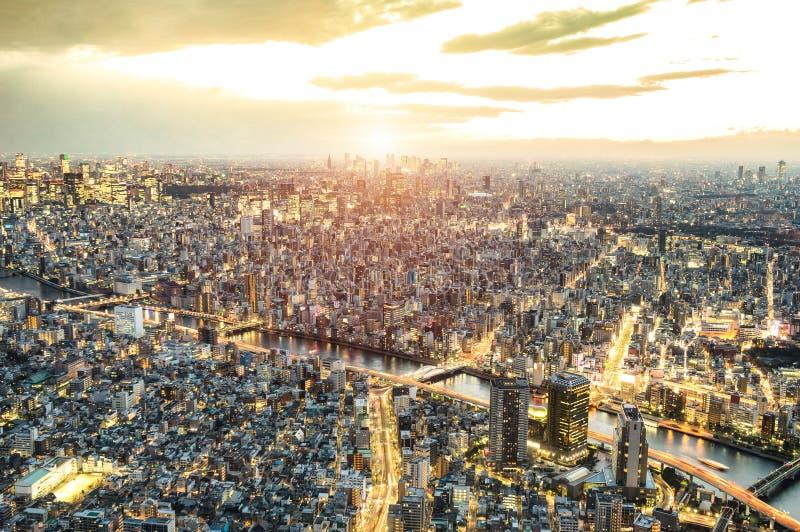 Flyg- sikt av Tokyo horisont från över på solnedgången och den blåa timmen - berömd huvudstad för japansk värld med spektakulär n royaltyfri fotografi