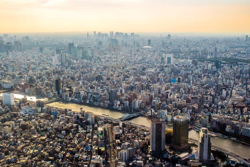 Flyg- sikt av Tokyo, Japan på solnedgången arkivbild