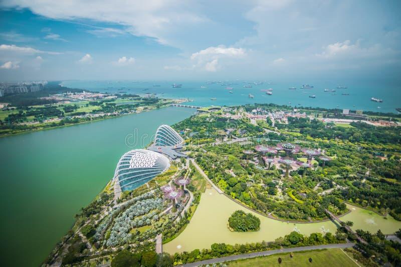 Flyg- sikt av toppna träd på trädgårdar vid fjärden, Singapore royaltyfri bild