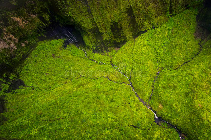 Flyg- sikt av vattenströmmar, floden och det frodiga landskapet, Kauai royaltyfri fotografi