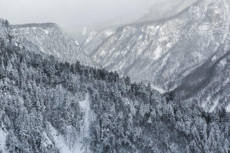 Flyg- sikt av vintern royaltyfria foton