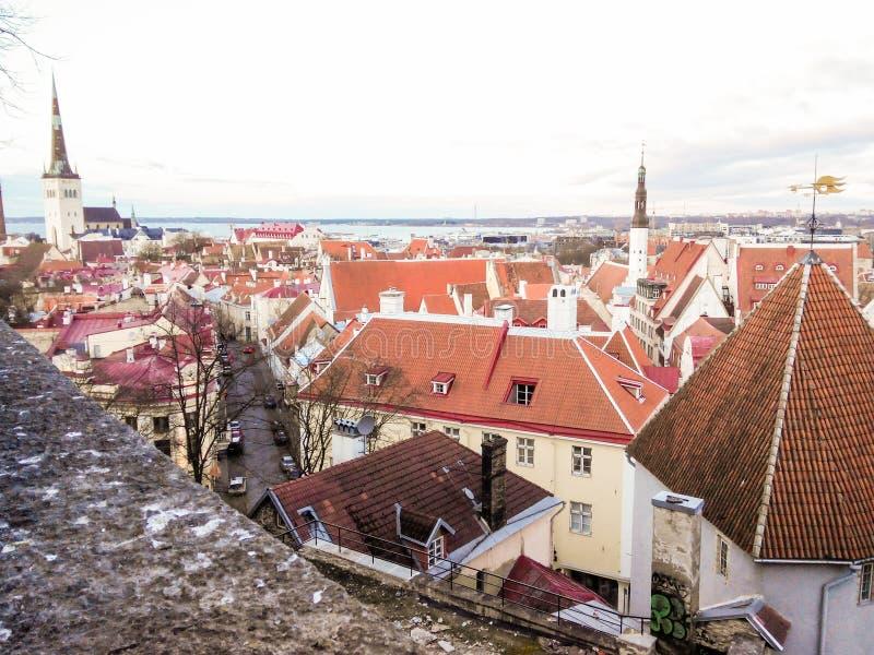 Flyg- sikt f?r Cityscape p? den gamla staden med St Nicholas det kyrkliga tornet och den Toompea kullen i Tallinn, Estland arkivbilder