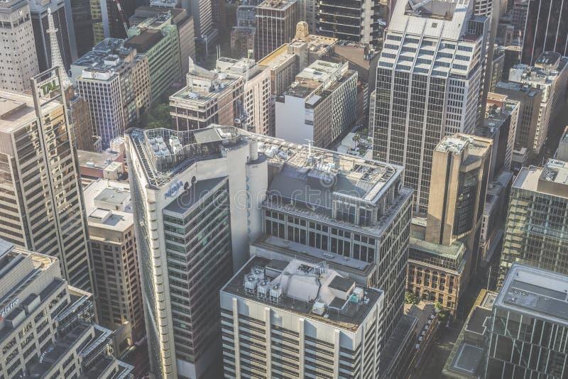 Flyg- sikt från Sydney Tower i Sydney Australia royaltyfria bilder