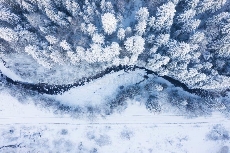 Flyg- sikt på floden och skogen på vintertiden Naturligt vinterlandskap från luft Skog under snö a vintertiden royaltyfria foton