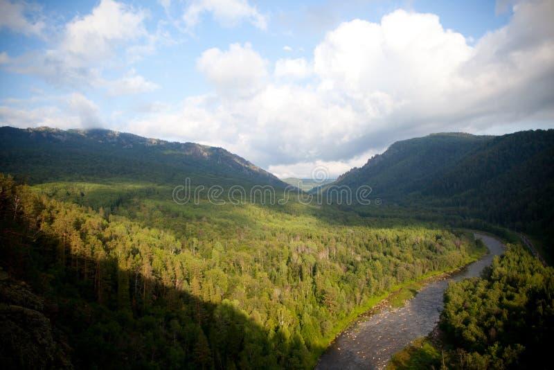 Flyg- sikt på skogen och floden royaltyfria bilder