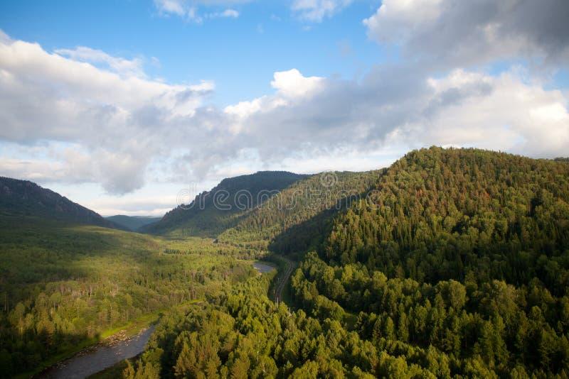 Flyg- sikt på skogen och floden royaltyfri foto