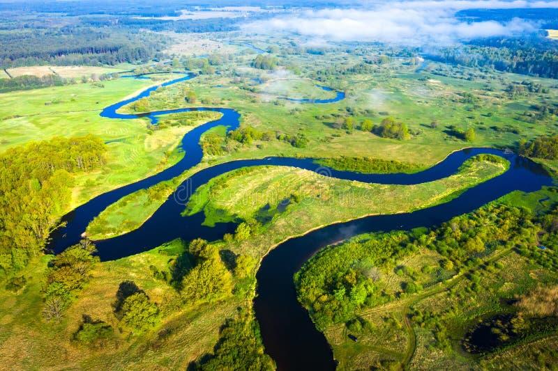 Flyg- sikt p? sommarfloden Flodstr?m p? gr?n ?ng Sommarnaturlandskap Surrsikt p? flodstranden arkivbild