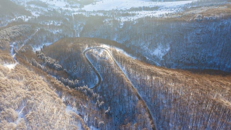 Flyg- sikt på vägen och skogen på vintertiden fotografering för bildbyråer