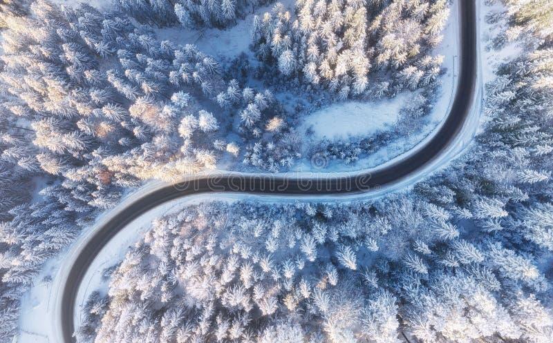 Flyg- sikt på vägen och skogen på vintertiden Naturligt vinterlandskap från luft Skog under snö a vintertiden royaltyfria foton