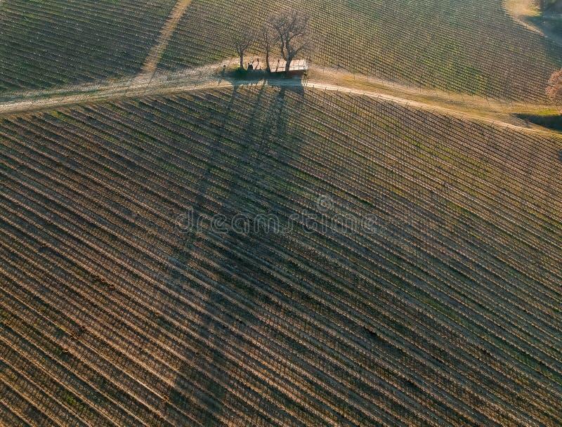 flyg- siktsving?rdar fotografering för bildbyråer