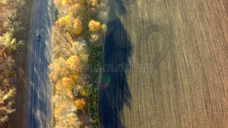 Flyg- skott för höstskogsurr, över huvudet sikt av lövverkträd och väg arkivfoto