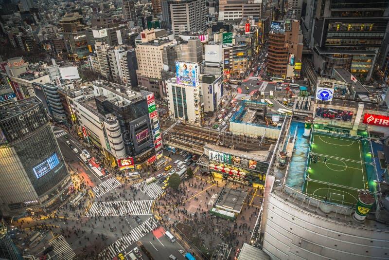 Flyg- stadssikt av den Shibuya korsningen - Tokyo, Japan royaltyfri fotografi