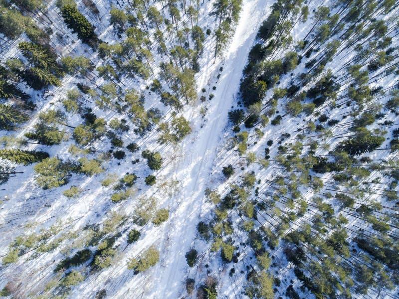 Flyg- surrsikt av ett vinterväglandskap Skog och väg för snö dold uppifrån Soluppgång i natur från en sikt för fågelöga royaltyfri bild