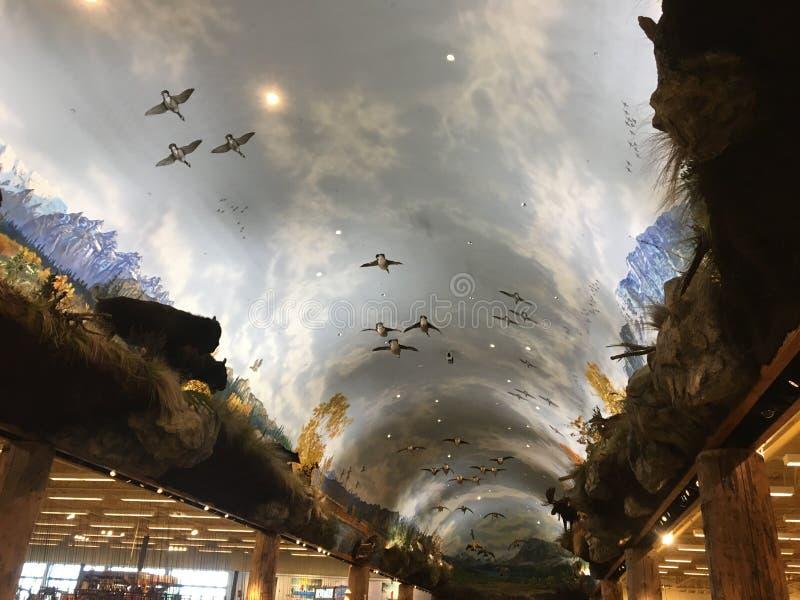Flyg till himmel arkivfoton