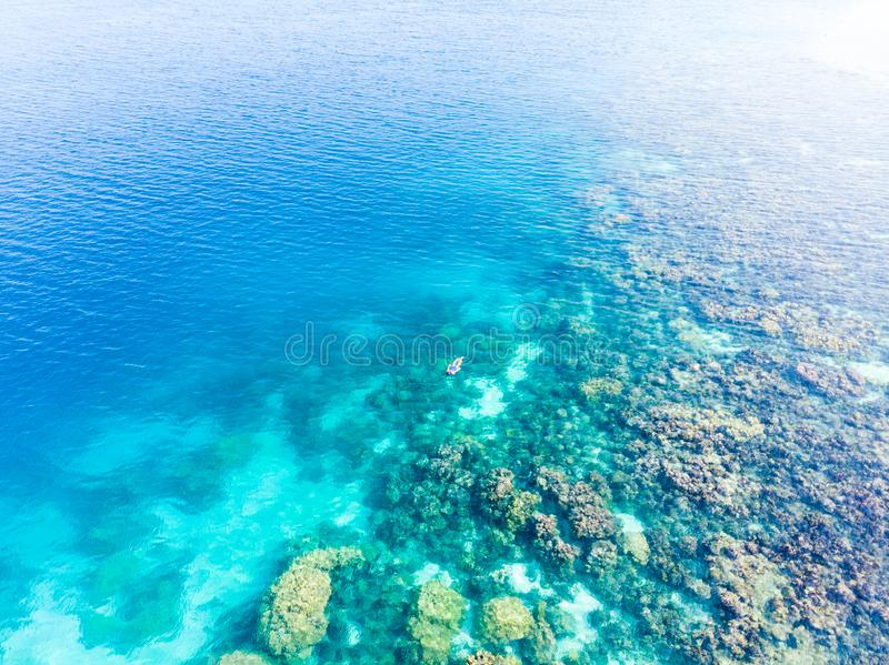 Flyg- ?verkant ner folk som snorklar p? det tropiska karibiska havet f?r korallrev, turkosbl?tt vatten Indonesien Wakatobi sk?rg? royaltyfria foton