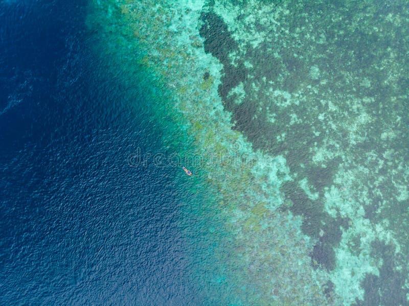 Flyg- ?verkant ner folk som snorklar p? det tropiska karibiska havet f?r korallrev, turkosbl?tt vatten Indonesien Wakatobi sk?rg? arkivfoton