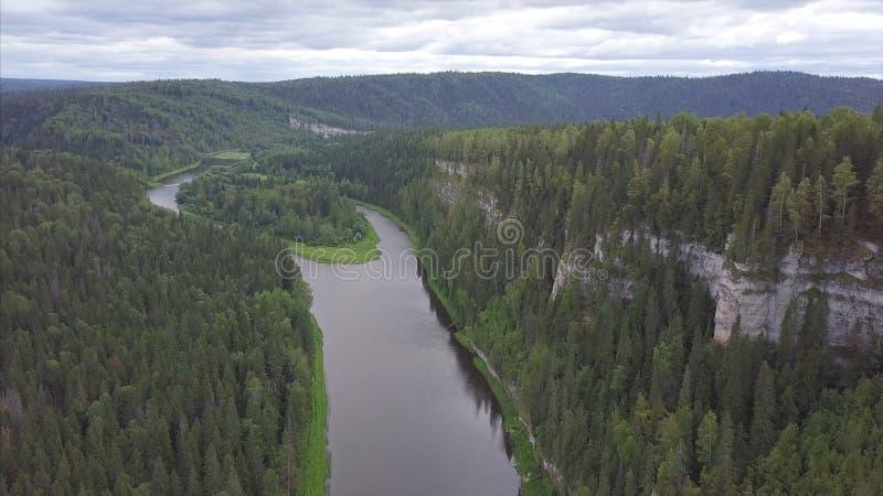 Flyga över den härliga bergfloden och det härliga skoggemet Flyg- sikt av den mystiska floden på soluppgång med dimma royaltyfria bilder