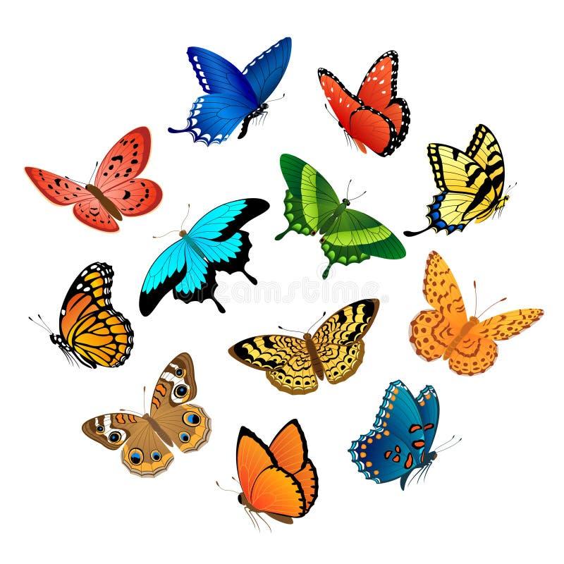 flyga för fjärilar vektor illustrationer
