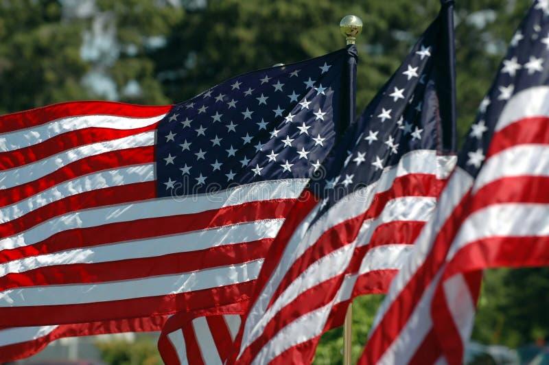 Download Flyga för flaggor fotografering för bildbyråer. Bild av stjärnor - 990323