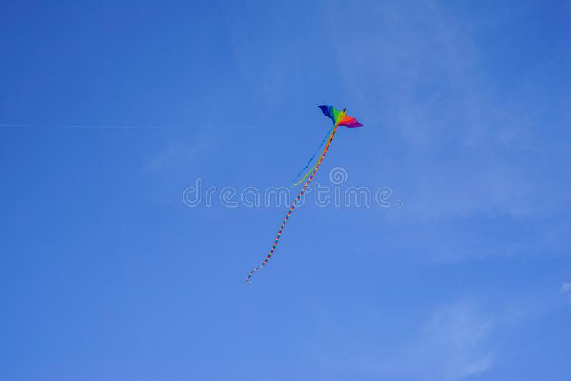 Flyga ormen med en lång svans i färgen av flaggan av sexuella minoriteter bög och lesbisk kvinnaflyget slingrar i form av en beau royaltyfri foto
