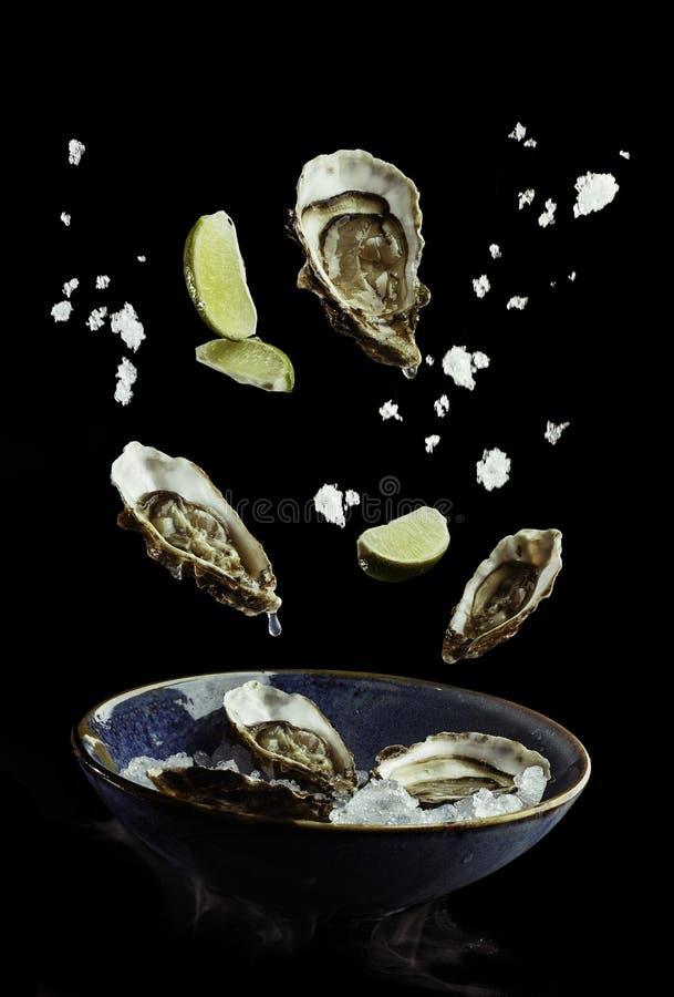 Flyga ostron med limefrukt och is ut ur plattan Begrepp av matförberedelsen i det låga gravitationfunktionsläget, matsvävning royaltyfri foto