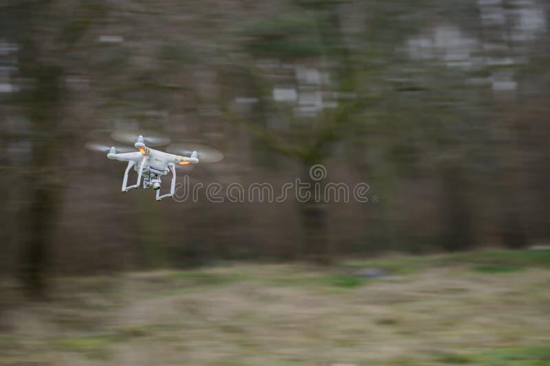 Flyga surret, i att panorera rörelse arkivbild