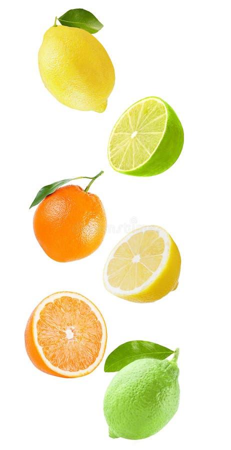 Flygapelsin, limefrukt och citron som isoleras på vit bakgrund royaltyfri foto