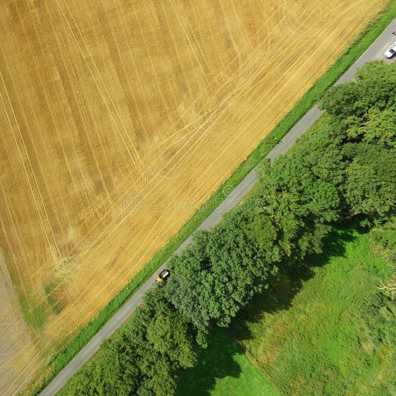 Flygbild av en grön äng och ett skördat vetefält med en bana och en rad av träd, abstrakt flygbild fotografering för bildbyråer