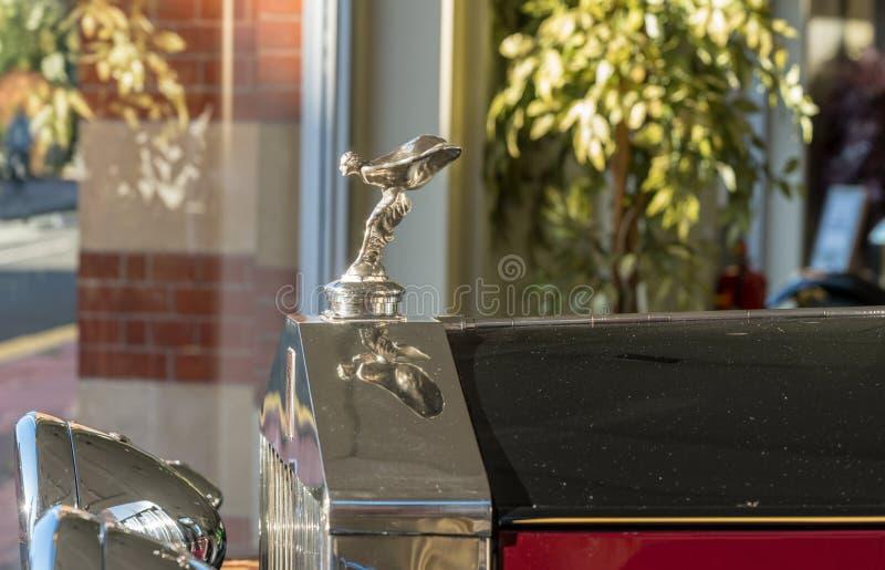 Flygdammaskot på den gamla Rolls Royce bilen royaltyfri bild