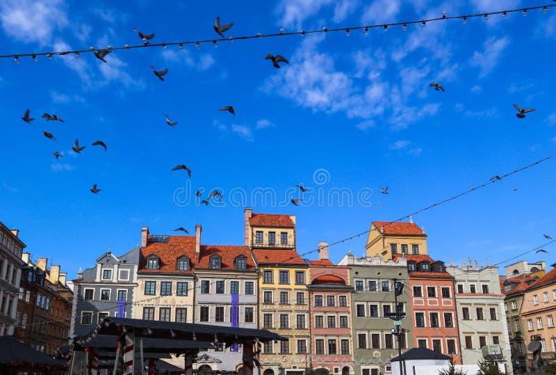 Flygfåglar över marknadsfyrkant av den gamla staden med julpynt Warsaw Polen royaltyfri foto