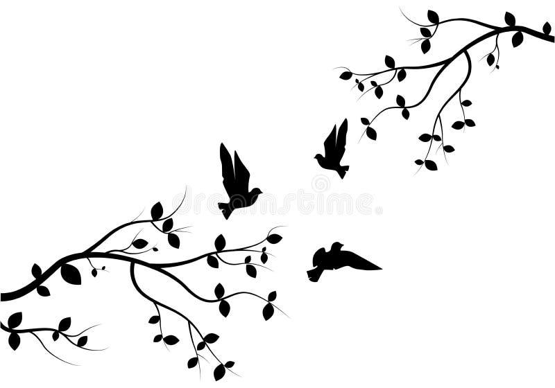 Flygfåglar på filialvektor, väggdekaler, fåglar på träddesign, kopplar ihop av fågelkontur Natur Art Design, väggdekor vektor illustrationer