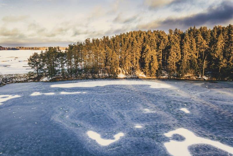 Flygfotografering av en skog i vinter - tappningblicken redigerar royaltyfri foto
