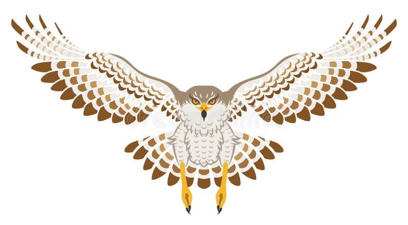 Flyghök, främre sikt som isoleras stock illustrationer