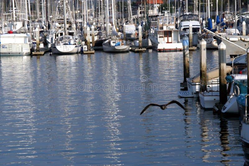Download Flyghamn fotografering för bildbyråer. Bild av kalifornien - 45137