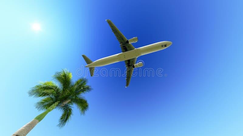 Flygplan över palmträdet stock illustrationer