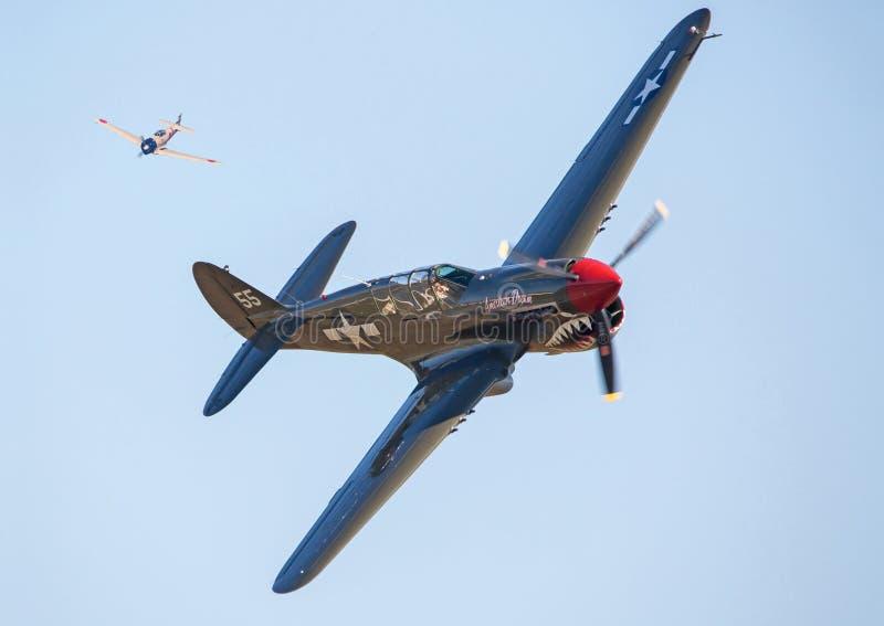 Flygplan för P-40 Warhawk i flyg- strid arkivfoto