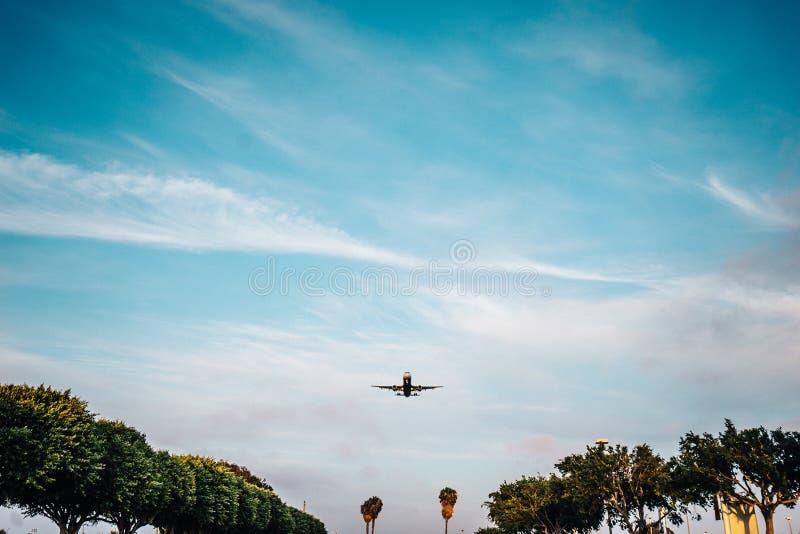 Flygplan i flykten